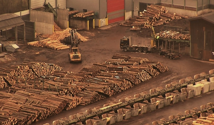 Colosul Holzindustrie Schweighofer tras pe dreapta