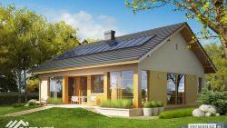 Proiect case pe structura metalica
