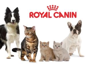 Royal Canin - mancare nutritionala pentru caini si pisici