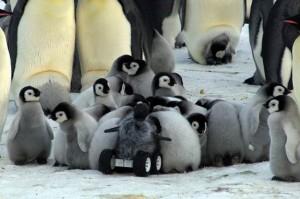 Pinguini roboti